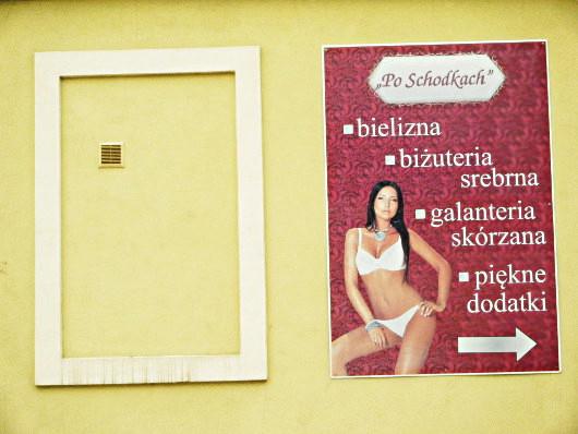 611_olesnica_alphileo.wordpress.com